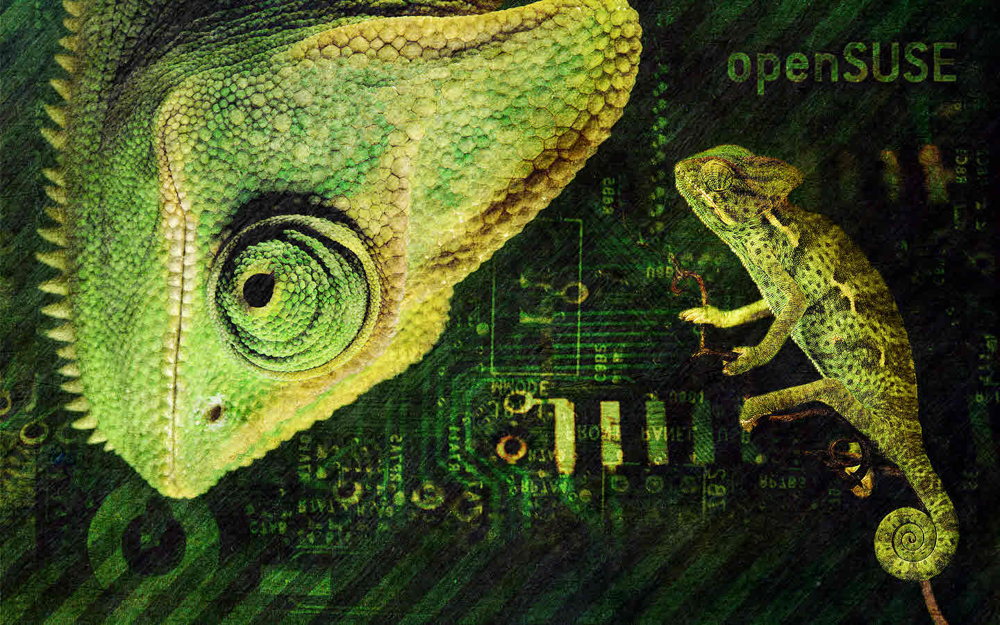 wallpapers opensuse
