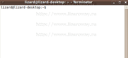 terminator Ubuntu